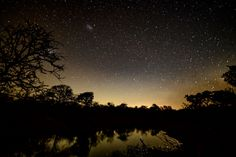 Stargaze with me - Beautiful sky 🌌 Would you like to join me ? 😉 - Stargaze with me – Beautiful sky 🌌 Would you like to join me ? Africa Safari Lodge, Safari Animals, Beautiful Sky, Countries Of The World, Stargazing, Safari Adventure, Family Travel, Wildlife, Join