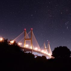 The Talmadge Bridge at night • Visit Savannah