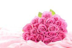 rosas flores rosas, rosas, bouquet, elegantes, los brotes de flor, tela de seda, hojas, wallpaper