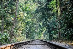 Lawachara National Park  is a major national park and nature reserve in Bangladesh. The park is located at Kamalganj Upazila, Maulvi Bazar District in the northeastern region  of the country.