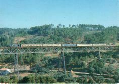 115 - Train