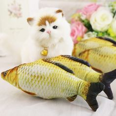Kind-Hearted New Fancy Feast White Label Seafood Medley Cat Supplies 85gm Fashionable Patterns