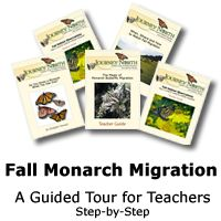 Fall Monarch Migration: A Guided Tour for Teachers