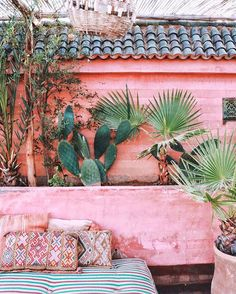 Beautiful corners of @riadjardinsecret 🌵💕