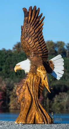 """{Paul Waclo """"Eagle in Flight"""" Chainsaw Wood Carving, Wood Carving Art, Wood Art, Wood Carvings, Eagle Images, Eagle Pictures, Chain Saw Art, Eagle Art, Art Sculpture"""