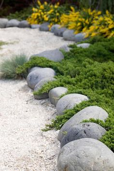 37 Garden Border Ideas To Dress Up Your Landscape Edging 37 Garden Border Ideas To Dress Up Your Landscape EdgingThis collection of garden edging ideas will help you define garden borders, highligh Asian Garden, Outdoor Gardens, River Rock Garden, Landscape Design, Flower Bed Borders, Landscaping With Rocks, Landscape Edging, Rock Garden Landscaping, Lawn And Landscape