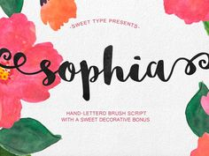 Shopia is fre handlettered brush script typeface with sweet, saucy, and a little shabby feel. A new hand-lettered brush style typeface. Script Typeface, Modern Script Font, Handwritten Fonts, Free Script Fonts Download, Best Free Fonts, Cool Handwriting Fonts, Free Fonts For Designers, Graffiti Font, Hand Drawn Fonts