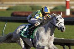 Hansen: Pretty impressive for his bloodlines. Out of Tapit and Stormy Sunday.He won the Gotham and the Breeders Cup Juvenile. He placed in his two other races, holy bull and the blue grass. Trained by Mike Maker and ridden by Ramon Dominguez. Should be interesting to watch.