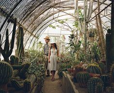 A Cacti Greenhouse