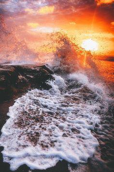 "banshy: ""La Jolla Tide Pools by Jon "" La Jolla Tide Pools, Venus, 4 Year Anniversary, Water Animals, Unique Wallpaper, Summer Sunset, Summer Vibes, California Dreamin', Best Photographers"