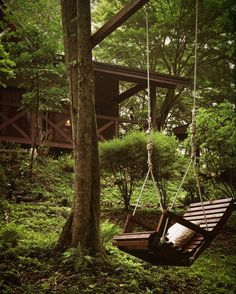 A swing in the middle of the forest