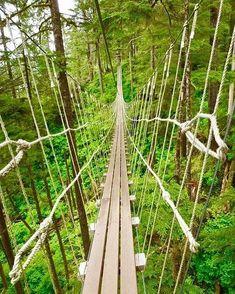 #Repost @waldenpeterd  Crossing this hanging bridge in Ketchikan Alaska was so scary. #green #nature #mountains #bridge #forest #alaska #hangingbridge