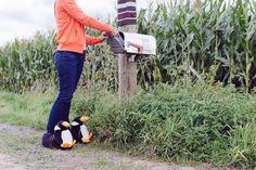 Pinguin-Hausschuhe - funslippers - neue Kollektion 2014 - Blog-funslippers.de