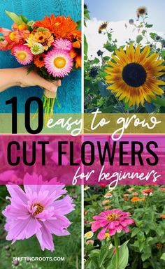Growing a cut flower garden these are the easiest flowers to start from seed even if you re a beginner cutflowers gardening flowergarden zinnia the most colorfur flowers for your garden Flower Garden Plans, Cut Flower Garden, Flower Farm, Flowers For Garden, Flower Gardening, Cut Garden, Small Flower Gardens, Flower Garden Design, Outdoor Flowers