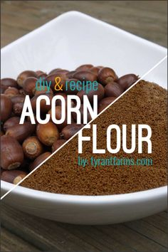 A simple DIY step-by-step guide with photos to help you make your own delicious, nutritious acorn flour from scratch. Plus, get three easy-to-make acorn recipes! #foraging #acornflour #tyrantfarms #wildcrafting Acorn Recipe, Raw Food Recipes, Drink Recipes, Jar Recipes, Freezer Recipes, Freezer Cooking, Potato Recipes, Vegetable Recipes, Bread Recipes