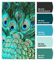 Peacock Color Scheme, Color Schemes Colour Palettes, Peacock Colors, Colour Pallette, Color Combinations, Peacock Feathers, Peacock Blue Paint, Colour Combo, Paint Colors For Home
