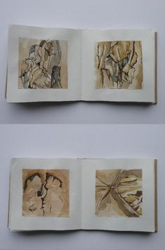 Walnut, Watercolour & Ink (60 Images Project) 2013