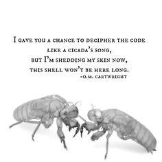 Cicada's Song (2018)