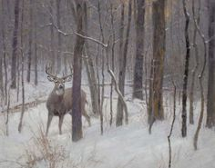 """Silent Forest"" by Ralph Oberg Hunting Art, Deer Hunting, Hunting Stuff, Wildlife Paintings, Wildlife Art, Deer Drawing, Hunting Pictures, Cowboy Art, Outdoor Art"