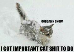 Whaha vreselijke sneeuw!!!!