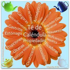 Té de Caléndula Para Qué Sirve y Cómo Se Prepara - Club Salud Natural #calendula #flor #salud #natural