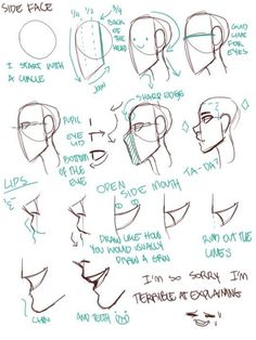 (Tutorial Picture by Tamaytka on Tumblr)
