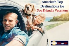 America's Top Destinations for Dog Friendly Vacations