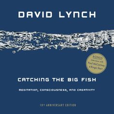 Catching The Big Fish - Meditation, - Submarino.com