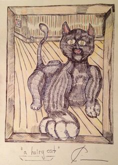 a hairy cat