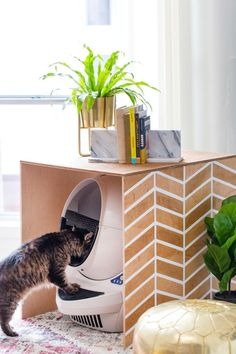 Sometimes it's necessary to hide kitty litter, especially when you have young children. These DIY litter box furniture ideas conceal and contain. Diy Litter Box Cover, Hidden Litter Boxes, Cat Litter Box Diy, Cleaning Litter Box, Litter Robot, Diy Love, Litter Box Enclosure, Dog Kennel Cover, Diy Inspiration