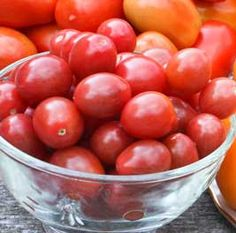 The Charm of Cherry Tomatoes - Which Varieties to Grow