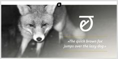 Weitalic - Webfont & Desktop font « MyFonts