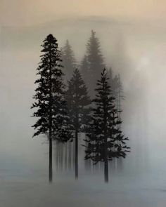 Super Pine Tree Tattoo Ribs Simple Awesome Ideas - Super Pine Tree Tattoo Ribs Simple Awesome Ideas Informations About Super Pine Tree Tattoo Ribs Simp - Watercolor Tree, Nature, Drawings, Sleeve Tattoos, Pine Tree Tattoo, Art, Pictures, Tree Drawing, Scenery