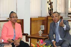 Le Ministre de l'Energie reçoit plusieurs délégations d'investisseurs intéressés par le potentiel hydroélectrique du Gabon