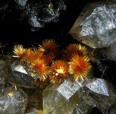 Karibibite - Oumlil Mine, Bou Azzer, Tazenakht, Morocco  mw