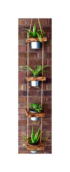 Lovely >> Hanging planter, indoor planter, succulent planter, vertical planter, wooden planter, hanging pot backyard, succulent pot, outside planter