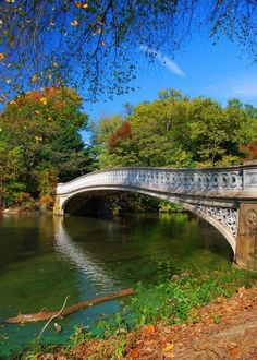 Central Park New York- Been many times... Never looked quite so Amazing.   Note to self: try my hand at photography.