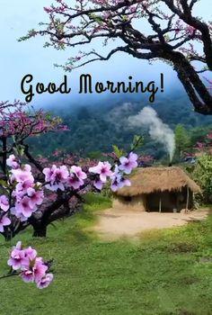 Good Morning Funny, Morning Humor, Morning Wish, Good Morning Quotes, Good Morning Beautiful Pictures, Good Morning Images, Morning Greeting, Gud Morning Images, Good Morning Beautiful Images
