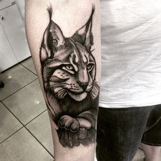 Ryś - Lynx  #ryś #lynx #tattoo #lynxtattoo