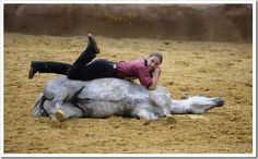 I can do this with my horse.  It is only because she is lazy though, ha ha!