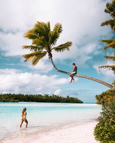 A guide to the best Cook Islands resorts activities local restaurants and beaches on the main island of Rarotonga and. Cook Islands Resorts, Fiji Islands, Rarotonga Cook Islands, Famous Places In France, Tropical Beaches, White Sand Beach, Island Life, Paradise Island, Summer Travel