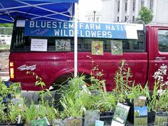 Madison Farmers Market Learn all about farmers markets farmersme.com/farmers-markets