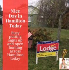 Lovely Sunday in Hamilton