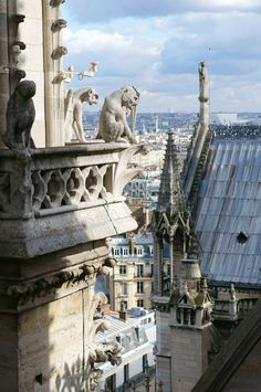 View from the top of the Notre-Dame Cathedral, Paris, France