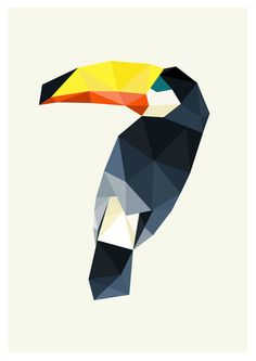 MARCH. Toucan (visual)
