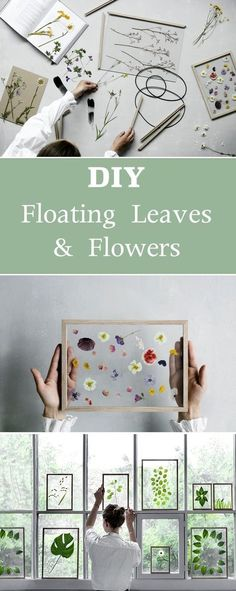 DIY Floating Leaves and Flowers   Give any room a fresh look with these simple decor crafts.