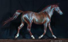 Horse Portrait by Jill Greenberg