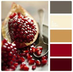ideas for kitchen colors palette decoration Kitchen Colour Schemes, Bedroom Color Schemes, Warm Color Schemes, Paint Schemes, Red Colour Palette, Color Red, Cream Colour, Red Colour Combination, Taupe Color