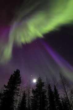 The incredible northern lights