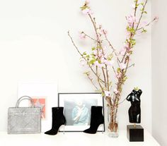 Fashion accessories styled in vignette.